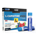 VP Laboratory L-Carnitine liquid 2500